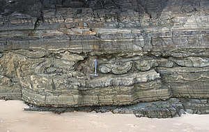 Soft-sediment deformation structures - Cross-sectional view of deformed beds caused by soft-sediment deformation in the Booti Booti Sandstone (Mississippian), New South Wales. (Rygel, M.C.)