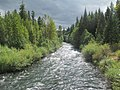 South Fork McKenzie River, Oregon.jpg
