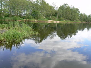 Слияние рек Миния и Вявиржас