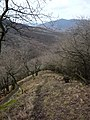 Spartacus-ösvény, Visegrád, Hungary - panoramio - Rudi Szabó (2).jpg