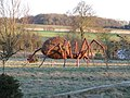 Spider in Suffolk - geograph.org.uk - 1130285.jpg