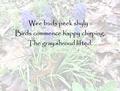 Spring Haiku.png