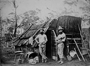 Colony of Queensland - Early gold miners were prepared to live rough to strike it rich.