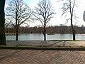 Staw w Polanowie - panoramio.jpg