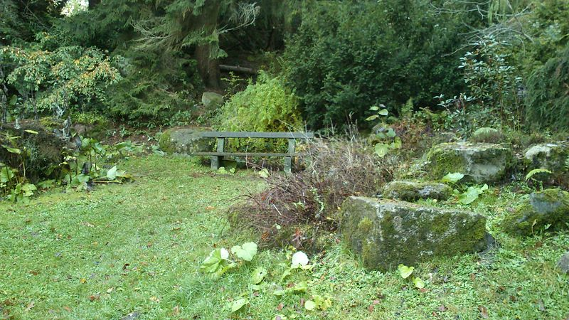 File:Stenpartiet i Aarhus Forst Botanisk have.jpg