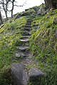 Steps on footpath, Tommy Wood - Hippins Clough - geograph.org.uk - 430627.jpg