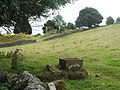 Stone trough and dilapidated barn - geograph.org.uk - 1443898.jpg