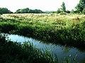 Stream, Attenborough Nature Reserve - geograph.org.uk - 202837.jpg