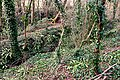 Stream in the woods - geograph.org.uk - 1192238.jpg