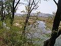 Streams in Wolpyeong Park.JPG