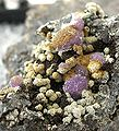 Strengite-Beraunite-247907.jpg
