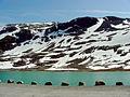 Summer Ski Area (1543518279).jpg