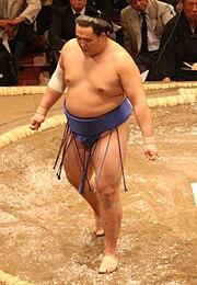Sumo May09 Tamawashi.jpg
