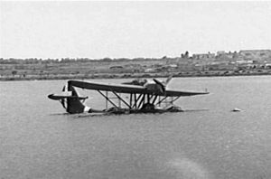 Sunken CANT Z.501 at Benghazi 1941.jpg