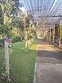 Suvarnabhumi Orchids Farm IMG 20160322 075014 (27447030855).jpg