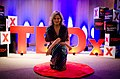 TEDxIguatemi - Maria Cândida (42337438970).jpg