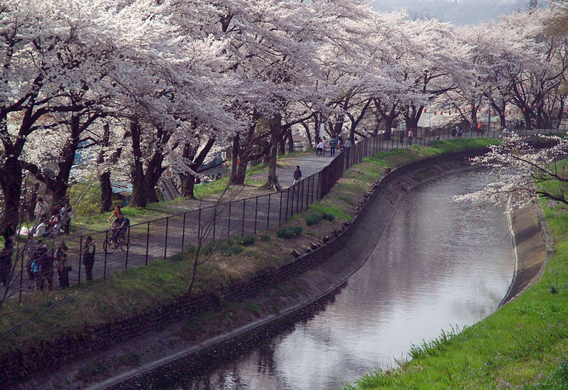 Datei:TamagawaJosui3810.jpg