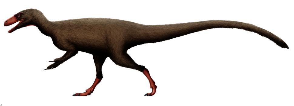 Tanycolagreus reconstruction