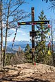 Techelsberg Hoher Gallin Gipfelkreuz 02042018 2853.jpg