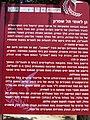 Tel Shimron 05.jpg