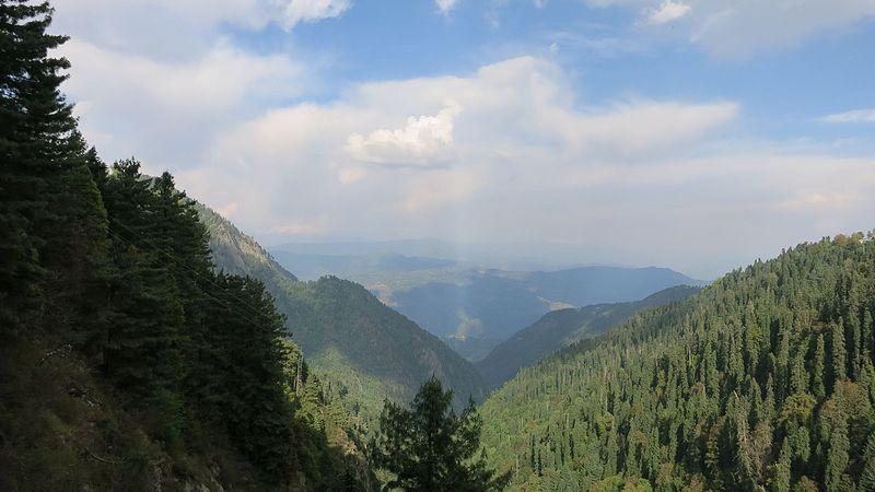 File:Temperate Himalaya.JPG