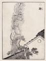 Ten-Japanese-Marten-from-Gazu-Hyakki-Yagyo-by-Sekien.png