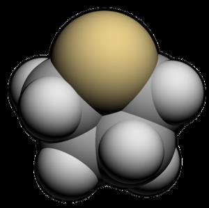 Tetrahydrothiophene - Image: Tetrahydrothiophene 3d