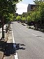 The 2nd Higashi-Sone Shin-Deki-machi Line of Nagoya City Road, Tokugawa-cho Higashi Ward Nagoya 2014.jpg