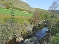 The Afon Tywi near Dolgoch Hostel, Ceredigion - geograph.org.uk - 1497719.jpg