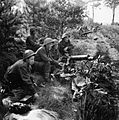 The British Army in North-west Europe 1944-45 B10144.jpg