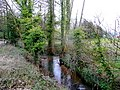The Ell Brook by Cleeve Mill 2 - geograph.org.uk - 1200521.jpg