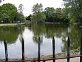 The Fishing Lake,Valence Park - geograph.org.uk - 1296438.jpg