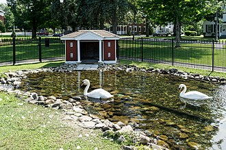 Swanton (town), Vermont - A new pair of Royal Swans took up residence in Swanton's Village Green Park in 2017.