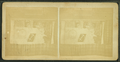 The Society badges, from Robert N. Dennis collection of stereoscopic views.png