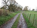 The Track To Howe Farm - geograph.org.uk - 287718.jpg