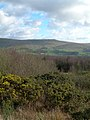 The View From Blawearie Wood - geograph.org.uk - 354816.jpg