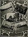 The banyan (1914) (14742555426).jpg