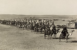Camel cavalry - Ottoman camel corps at Beersheba during the First Suez Offensive of World War I, 1915.