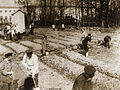 The late Czar and his family working in garden during internment at Tsarskoe-Selo 1917.jpg