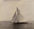 The yacht Canada Photo B (HS85-10-8744) original.tif