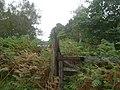 This way to Dalhaikie - geograph.org.uk - 249162.jpg