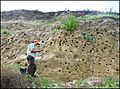 Tn 1200 paulette loess soil cliff jpg.jpg