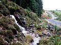 Trackside waterfalls near Loch Frisa - geograph.org.uk - 270436.jpg