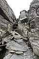 Trail up the Grande Dent de Morcles (14992265528).jpg
