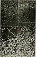 Transactions (1871) (14579797207).jpg