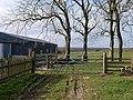 Trees and barn, East Barnby - geograph.org.uk - 689614.jpg