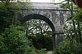 Treffry Viaduct - geograph.org.uk - 566562.jpg
