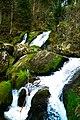 Triberger Wasserfälle (221234971).jpeg