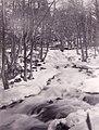 Trollhättan Falls 1888.jpg