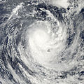 Tropical Cyclone Rene 2010-02-14.jpg